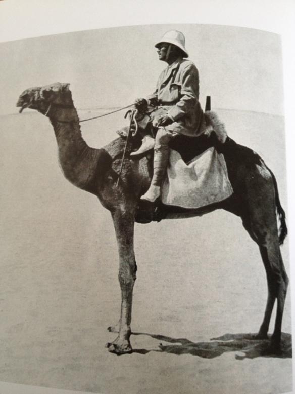 Sven Hedin på kamel. Bilden från Hvar 8 dag, vol. 10:17, 1909.